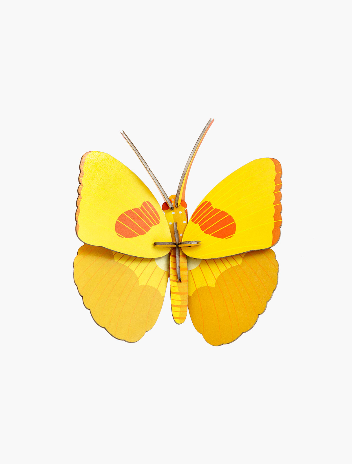 »YELLOW BUTTERFLY«  — STUDIO ROOF