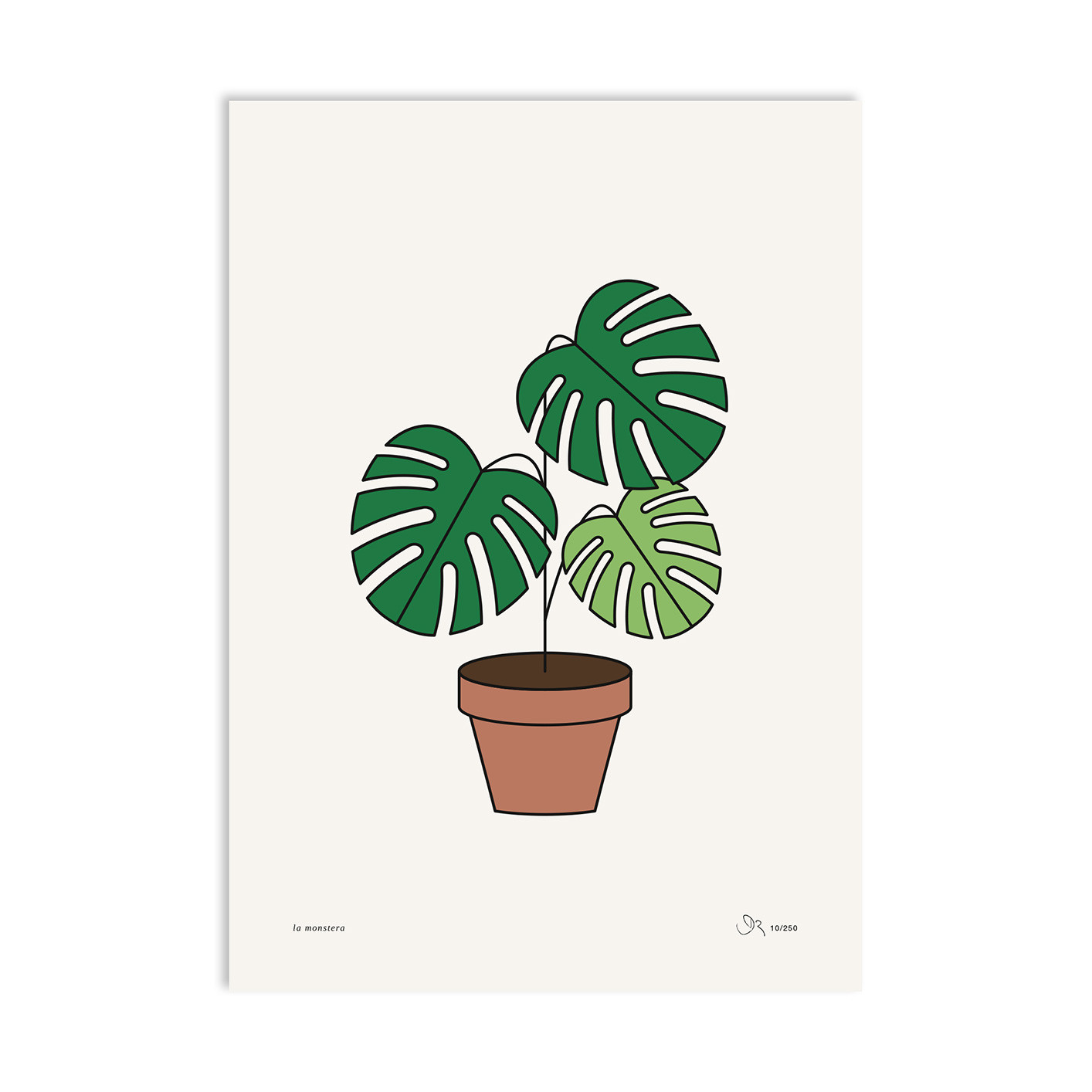 »MONSTERA «— A3 — Redfries